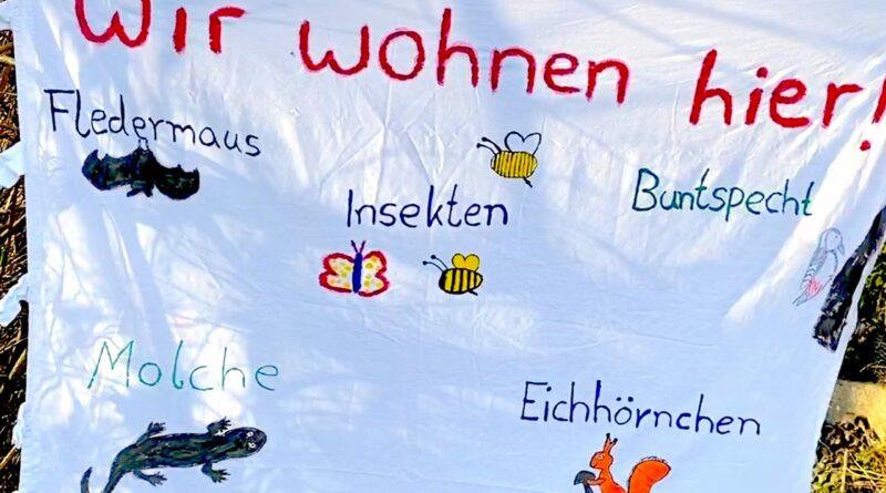 """Plakat mit der Aufschrift """"Wir wohnen hier!"""" und aufgemalten Fledermaus, Molch, Eichhörnchen, Buntspecht und Insekten und Schmetterlingen."""